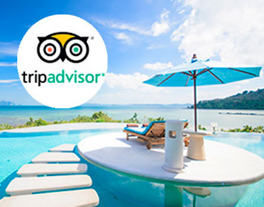 Trip Advisor Reviews and Ratings